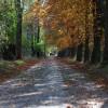 Indian Summer im Harz – Tour 3 Schierke, Steinerne Renne Oberharz